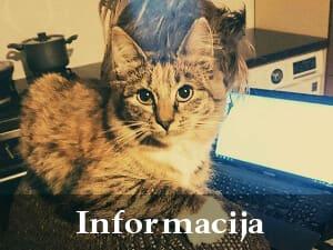 Informacija, Kontaktai